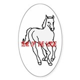 Year of the Horse Oval Decal