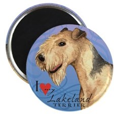 "Lakeland Terrier 2.25"" Magnet (10 pack)"