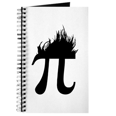 Hair Pi Journal