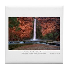 Mooney Falls Tile Coaster