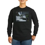 Falling For The Falls T