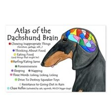 Dachshund Brain (BT) Postcards (Package of 8)