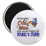 Old & Wise = Young & Stupid Magnet