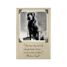 Old Hound Dog Rectangle Magnet