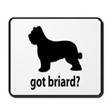 Got Briard? Mousepad