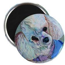 White Poodle Magnet