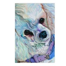 White Poodle Postcards (Package of 8)