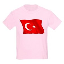 Turkish Flag (No Text) T-Shirt