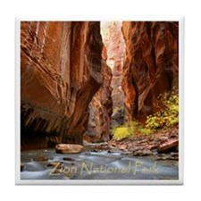 Cute Zion national park Tile Coaster