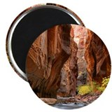 Cute Zion 2.25&quot; Magnet (10 pack)
