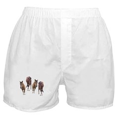 Bay Horse #4 Boxer Shorts