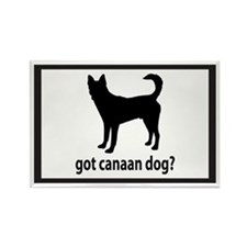 Got Canaan Dog? Rectangle Magnet
