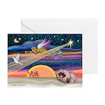 XmasStar/Pekingese (R) Greeting Cards (Pk of 20)