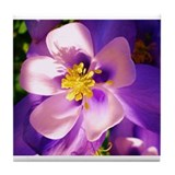 Columbine flower Tile Coaster