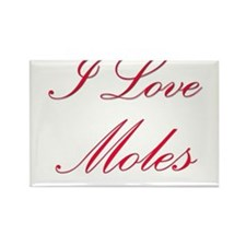 I Love Moles Rectangle Magnet (10 pack)