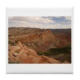 Cute Capitol reef national park Tile Coaster