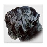 Black Russsian terrier Tile Coaster