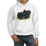 Black Frizzle Cochins2 Hooded Sweatshirt