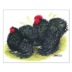 Black Frizzle Cochins2 Small Poster