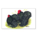 Black Frizzle Cochins2 Rectangle Sticker 10 pk)