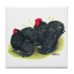 Black Frizzle Cochins2 Tile Coaster