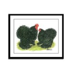 Black Frizzle Cochins Framed Panel Print