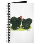 Black Frizzle Cochins Journal