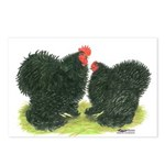 Black Frizzle Cochins Postcards (Package of 8)