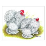 White Frizzle Cochins Small Poster