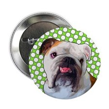 Comical Bulldog Button