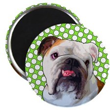 Comical Bulldog Magnet