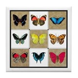 Cute  blue butterflies Tile Coaster
