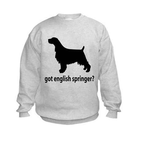Got English Springer? Kids Sweatshirt