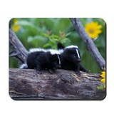 Skunk Mousepad