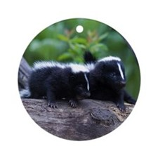 Skunk Keepsake (Round)