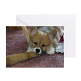Awww!  Greeting Cards (Pk of 10)