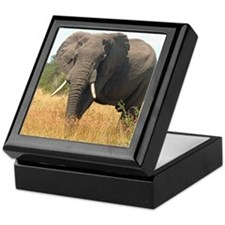 Elephant in Grass Keepsake Box