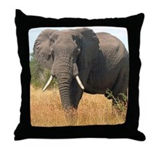 Elephant in Grass Throw Pillow