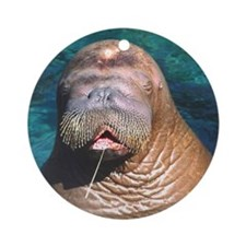 Walrus Eyes Closed Ornament (Round)