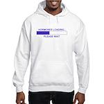 HORMONES LOADING... Hooded Sweatshirt