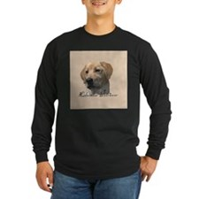Labrador Retriever T