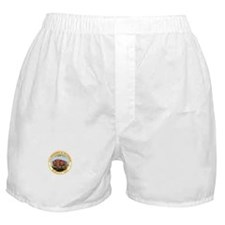 DEPARTMENT-OF-THE-INTERIOR- Boxer Shorts
