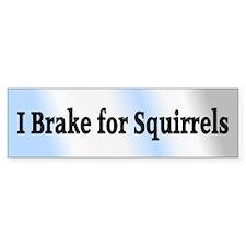 I Brake for Squirrels 6 Bumper Bumper Sticker