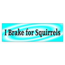 I Brake for Squirrels 4 Bumper Bumper Sticker