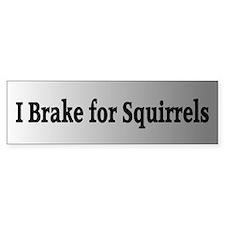 I Brake for Squirrels 3 Bumper Bumper Sticker