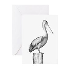 Pelican Greeting Cards (Pk of 20)
