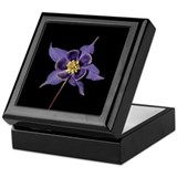 Blue Columbine Flower Keepsake Box