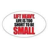 LIFE TOO SHORT SMALL Oval Decal