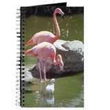 Growing Up Flamingo Journal