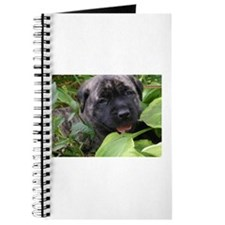 Funny Brindle mastiff Journal